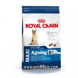 Aeging Maxi +8 para perros seniors - Royal Canin