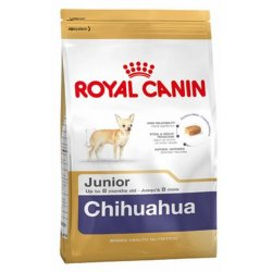 Chihuahua junior Royal Canin
