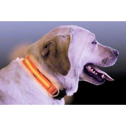 Collar nylon LED luminoso