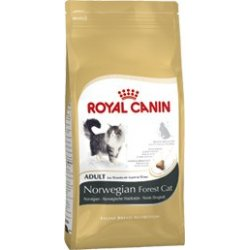Bosque de Noruega - NORWEGIAN FOREST de Royal Canin