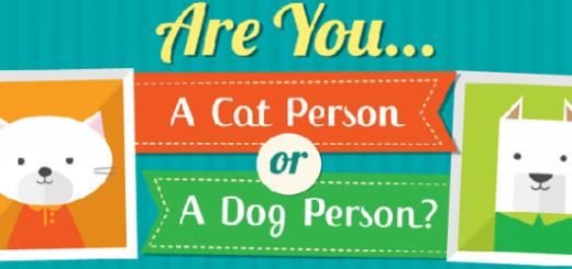 Persona-gato o persona-perro